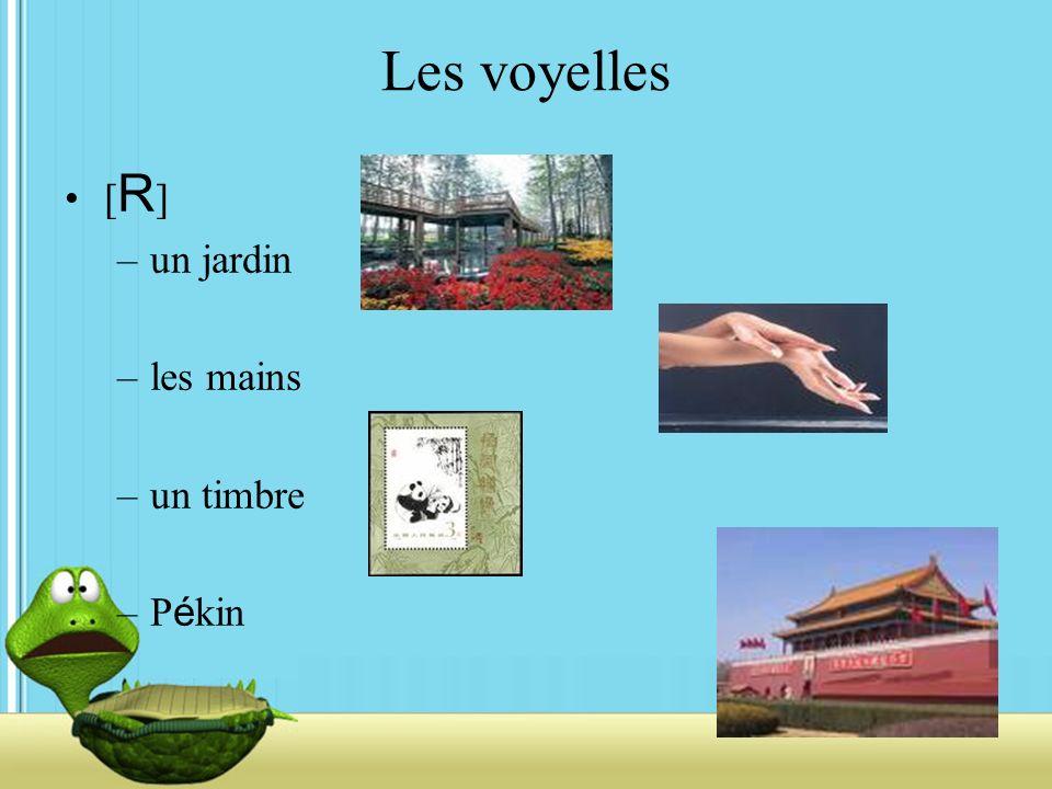 Les voyelles [R] un jardin les mains un timbre Pékin